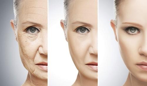 anti penuaan dini