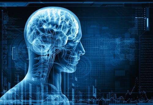 manfaat kunyit untuk meningkatkan kinerja otak