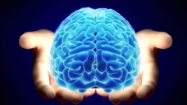 Meningkatkan fungsi otak