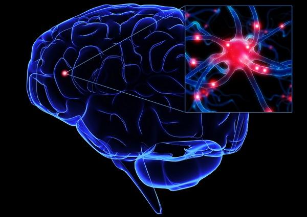 Kerusakan otak (Meningeal Tuberculosis)