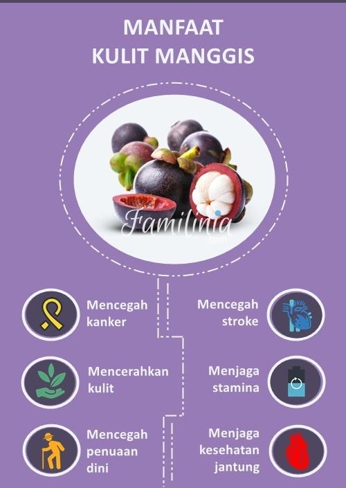 Manfaat Kulit Manggis