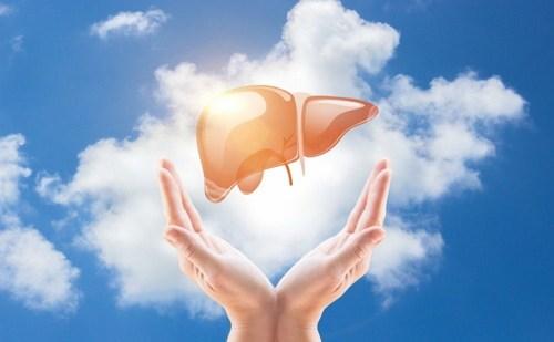 Melindungi liver dari penyakit