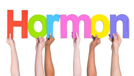 faktor hormon