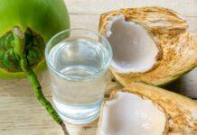 manfaat kelapa untuk kesehatan